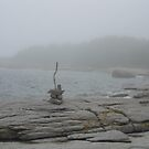 Sculpture on Island by Tostimomi