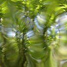 Plasma leaves serie n°6 by edend