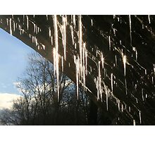 DAZZLING ICICLES Photographic Print