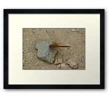 "(7/13) ""I'm Not Rusting"" Framed Print"