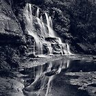 Katoomba Falls by Adriana Glackin