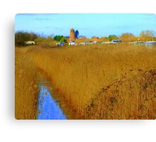 Potter Heigham in march09. Canvas Print