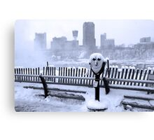 Face of the Falls Canvas Print