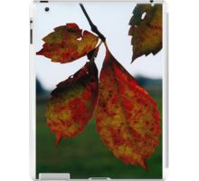 Live your life one death at a time iPad Case/Skin