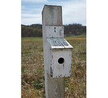 Roadside Birdhouse Photographic Print
