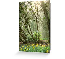 Mythical Place HDR Greeting Card