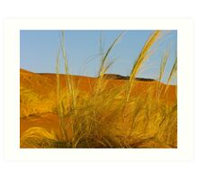 desert breeze Art Print