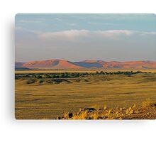 distant sand dunes Canvas Print