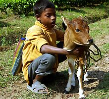 An Assamese boy and his pet calf. by John Mitchell