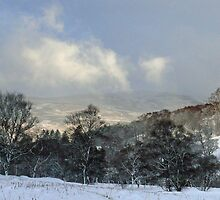 Winter on the Cromdales, Scotland by Pamela Baker