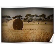 Hay Field -  Beveridge Poster