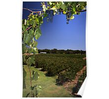 """Capel Vale Winery"" Margaret River, Western Australia Poster"
