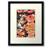 an impression of autumn Framed Print