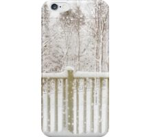 Dooms Day iPhone Case/Skin