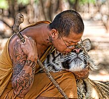 Tiger Love in Thailand by Anne Young