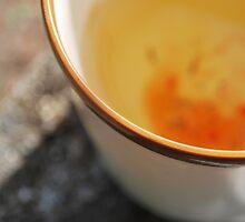 Rosehip Tea by AylaM