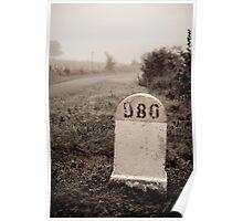 D80 landmark Poster