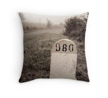 D80 landmark Throw Pillow