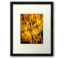 Heat And Old Bamboo... Framed Print