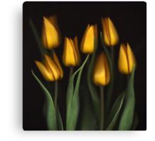 Autumn Tulips Canvas Print