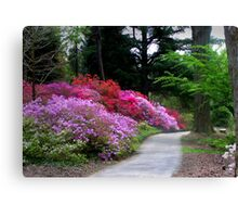 The Garden Path Canvas Print