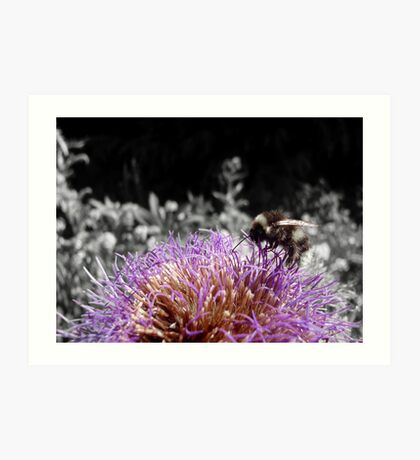 Busy Little Thistle Bee Art Print