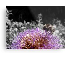 Busy Little Thistle Bee Metal Print
