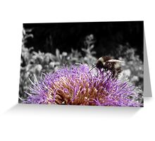 Busy Little Thistle Bee Greeting Card