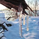 cold winter icicles after first snow storm by robertpatrick