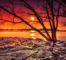 """Fire and Ice"" by Robert Brown"