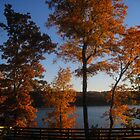 October at the Lake II by Virginia Shutters