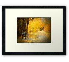 Nature's Golden Corridor Framed Print