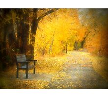 Nature's Golden Corridor Photographic Print
