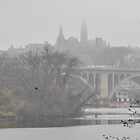 Georgetown University by Matsumoto