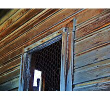 Chicken Wire Photographic Print