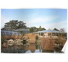 botanical greenhouses Poster