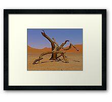 desert gladiators Framed Print