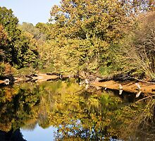 Fall on the Eno River by Alison Simpson