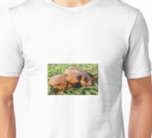 6415 shroom Unisex T-Shirt
