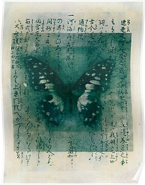 Butterfly Calligraphy by Antaratma Images