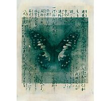 Butterfly Calligraphy Photographic Print