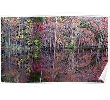 Canton, New Jersey USA Pond Peak Color Poster