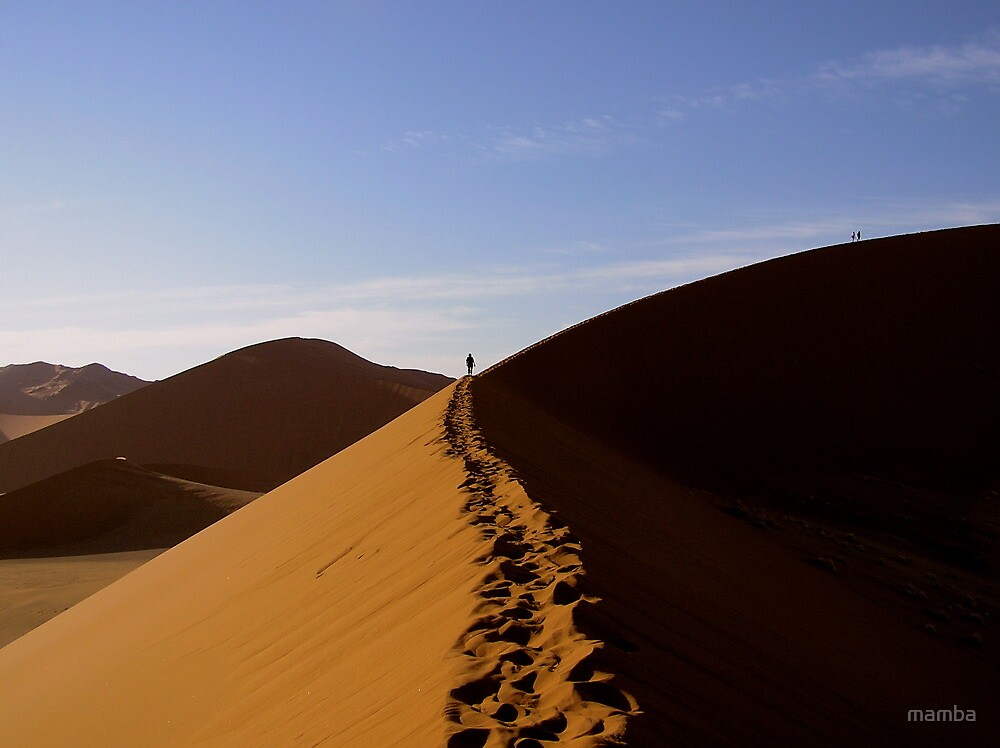 footprints in the Namib by mamba