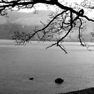 Derwent water by Debbie Ashe