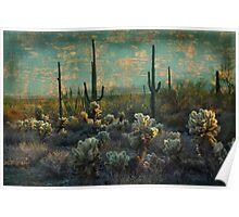 Desert Landscape Poster