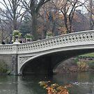 Park Bridge by CMCetra