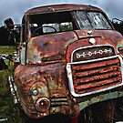 Rusting truck, maroota. by Matt kelly.