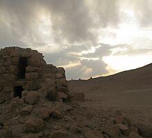 Near Palmyra, Syria by Cendrine  Marrouat