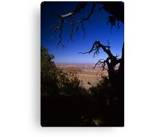 View From the North Rim, Grand Canyon, Arizona Canvas Print