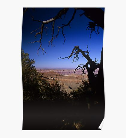 View From the North Rim, Grand Canyon, Arizona Poster